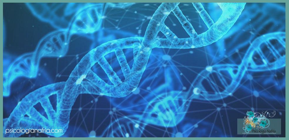 Orígenes genéticos